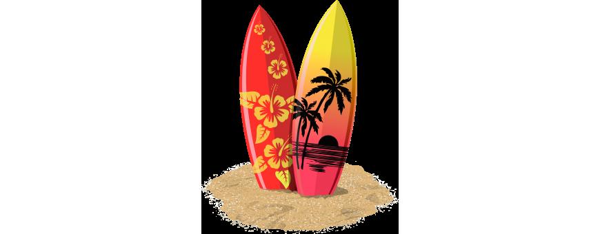 Body Surf, Skim Board e Assi Nuoto